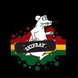 skiprat punk/reggae/ska