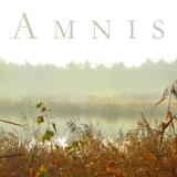 The Amnis Initiative