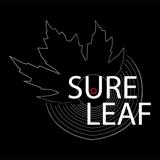 It´s A Sure Leaf